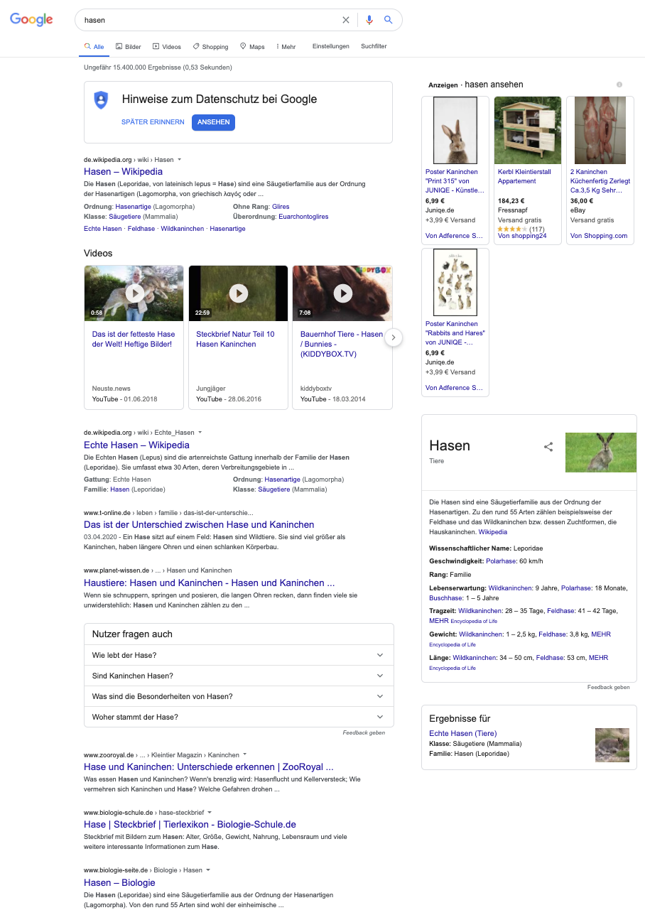 """Eine Google Suche nach dem Keyword """"Hasen"""" zeigt, dass mit einer so unkonkreten Suchanfrage viele verschiedene Ergebnisse erscheinen, von denen die Meisten vermutlich nicht das ausspielen, was Du wissen möchtest."""