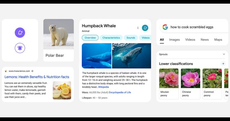 """Auf dem Bild ist ein Einblick in das neue Design der mobilen Google Suche zu sehen. Hierbei wird sichtbar, dass der Fokus auf den einzelnen Ergebnissen liegen soll, weshalb sie in unterschiedliche Ereigniskarten unterteilt werden. Durch mehr """"Breathing Room"""" zwischen den einzelnen Kacheln soll dem Nutzer geholfen werden, sich besser auf die Informationen zu konzentrieren, die für ihn wichtig sind."""