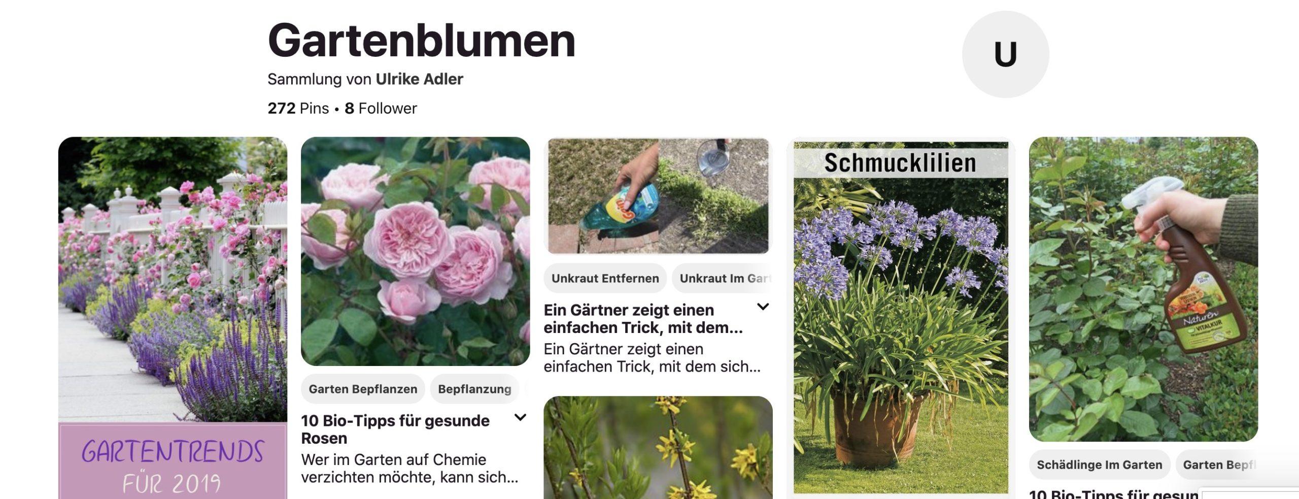 """Auf dem Bild ist ein Beispiel einer Pinterest-Suche nach """"Gartenblumen"""" zu sehen. Hierbei sieht man deutlich, dass alle Thumbnails die gleiche Breite haben und nur in ihrer Höhe variieren."""