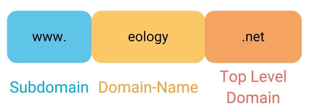 The graphic shows the different components of a domain using www.eology.net as an example. The first component is the www as a subdomain. The domain name is eology. This is followed by the top level domain. In this example .de